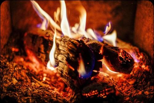 20150127-200_muses-Imatge_Fire_Matthias_Ripp_CC2.0_Attribution-Text_Monstres_de_tres_camps_Tere_SM