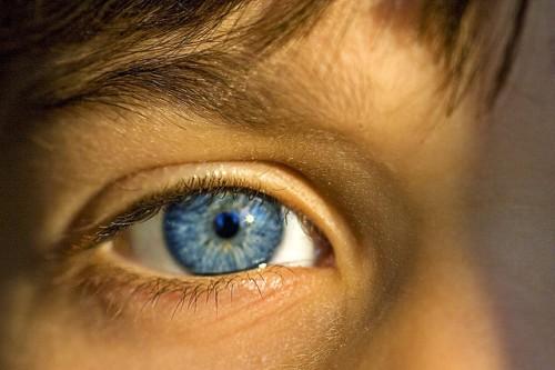 20150305-200_muses-Imatge_Gives_Ya_The_Big_Eye_Randen _Pederson_CC2.0_Attribution-Text_Alexandre_Tere_SM