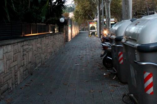 20151208-200_muses-Imatge_Pedralbes_Barcelona_Avinguda_Esplugues_contenidors_escombraries_Tere_SM-Text_Cantonada_revolucio_Tere_SM