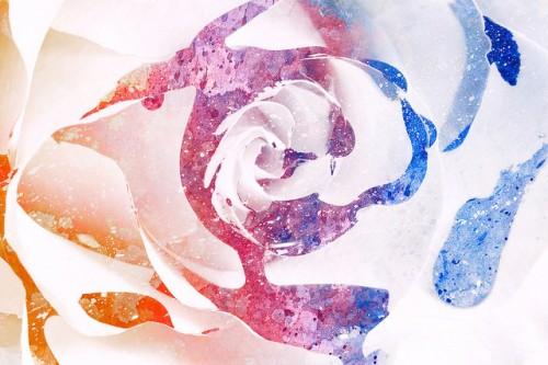 20150619-200_muses-Imatge_Acrylic_Rose_Macro-Vibrant_Splashes_Splatters_Nicolas_Raymond_CC3.0_Attribution-Text_Viu_en_mi_Tere_SM