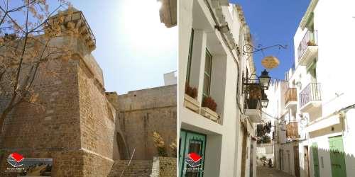 20190317-Revolucio_Formigues-Teresa_Saborit-Formentera-2-Illes_Balears-Eivissa